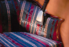 Upholstery Cleaning Buffalo Grove IL