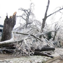 How to Protect Your Home from Storm Damage in Winter
