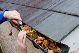 clean gutters to prevent water damage