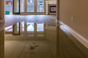 water damage restoration and cleanup - flooded house