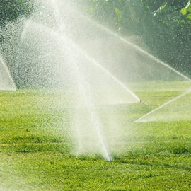 Can a Sprinkler System Cause Water Damage?