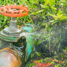 Main Water Valve Is Leaking – What to Do